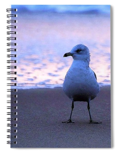 Seagull Posing Spiral Notebook