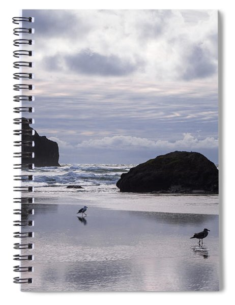 Seagull Reflections Spiral Notebook