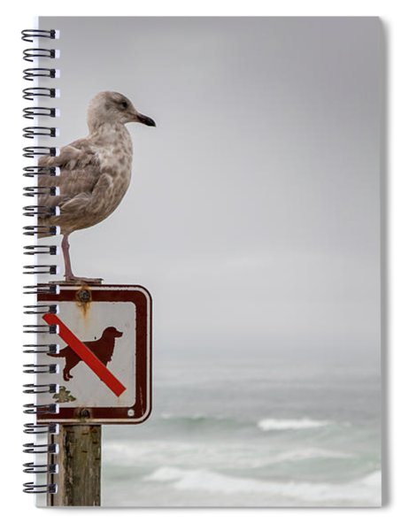 Seagull Standing On Sign And Looking At The Ocean Spiral Notebook