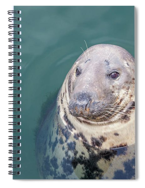 Seal With Long Whiskers With Head Sticking Out Of Water Spiral Notebook