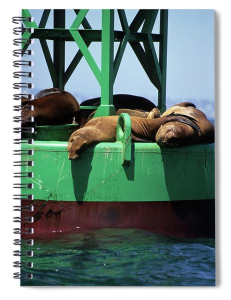 Seals On Channel Marker Spiral Notebook