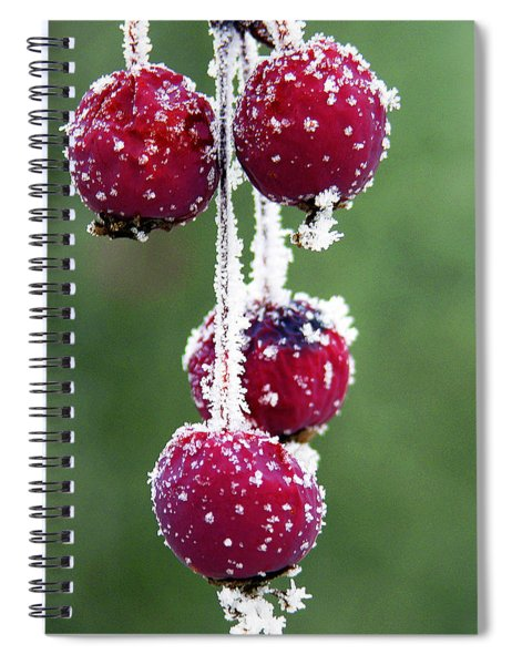 Seasonal Colors Spiral Notebook