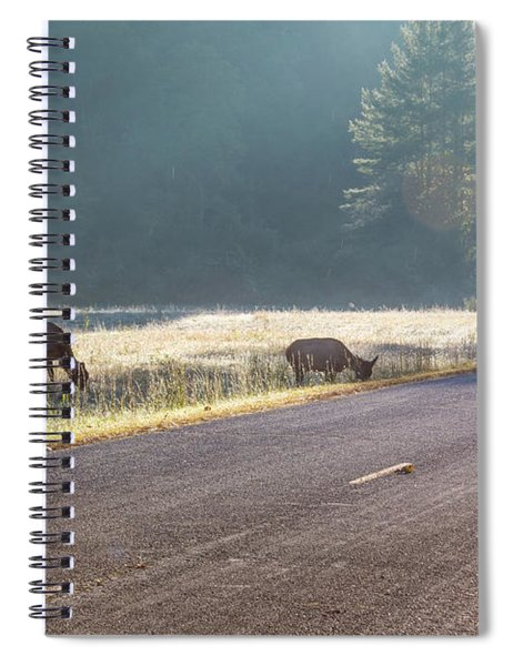 Searching For Greener Grass Spiral Notebook