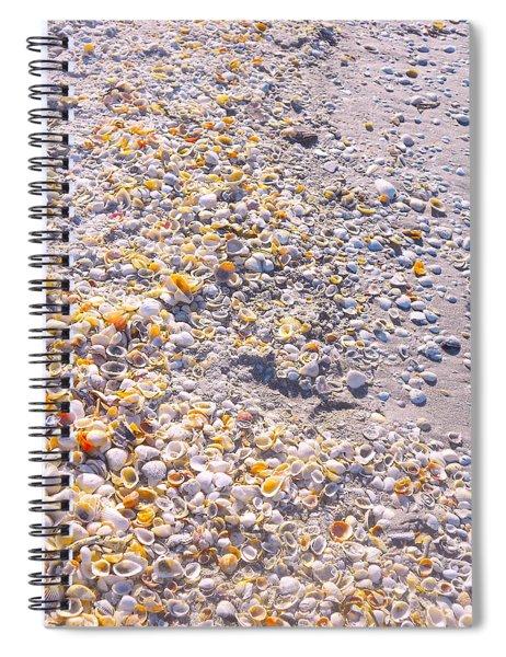 Seashells In Sanibel Island, Florida Spiral Notebook
