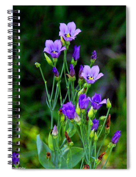 Seaside Gentian Wildflower  Spiral Notebook
