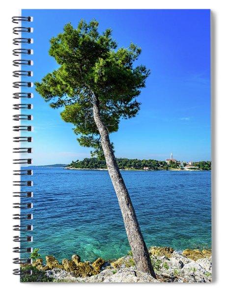 Seaside Leaning Tree In Rovinj, Croatia Spiral Notebook