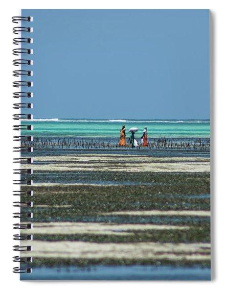 Seaweed Colectors Spiral Notebook