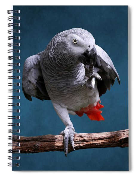 Secretive Gray Parrot Spiral Notebook