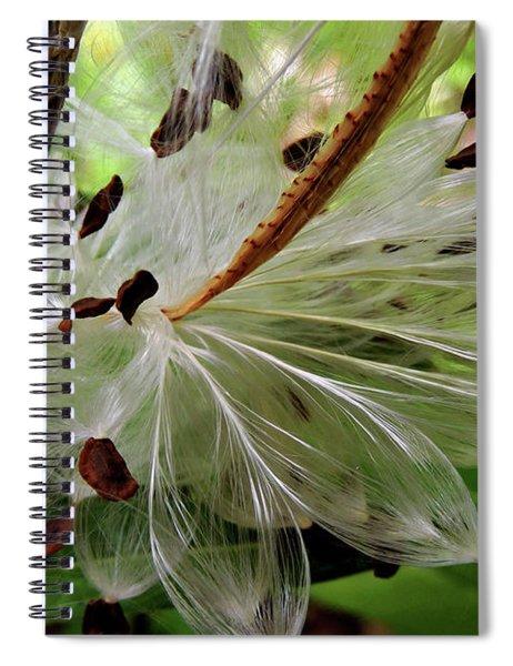 Seed Pods Spiral Notebook