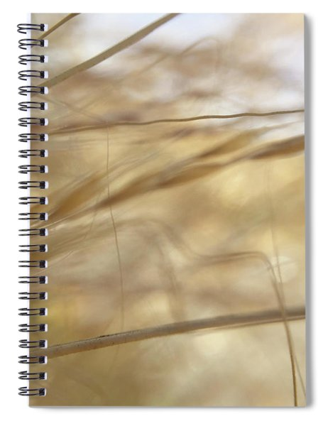 Semolina Spiral Notebook