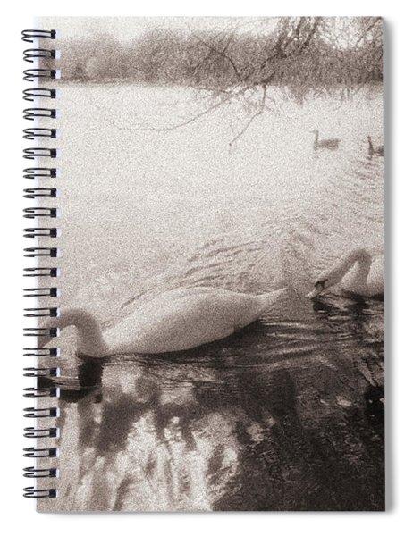 Sepia Swans Spiral Notebook