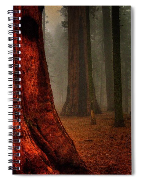 Sequoias In The Clouds Spiral Notebook