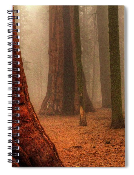 Sequoias Touching The Clouds Spiral Notebook