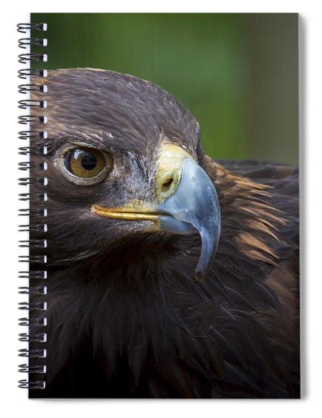 Serious Spiral Notebook