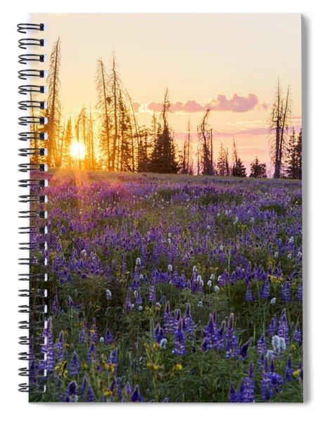 Shades Spiral Notebook