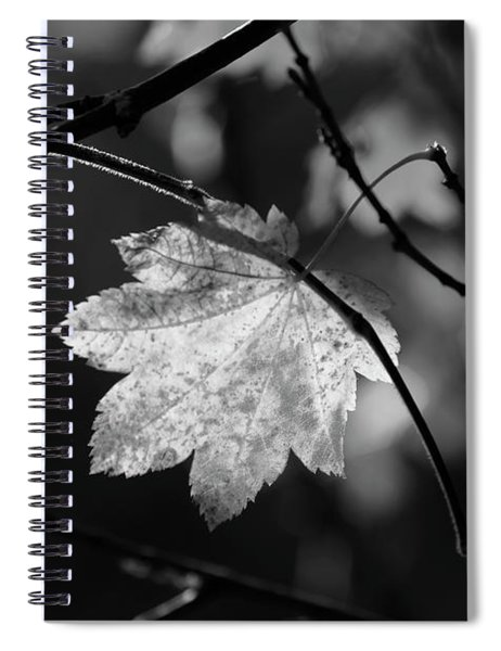 Shades Of Grey Spiral Notebook