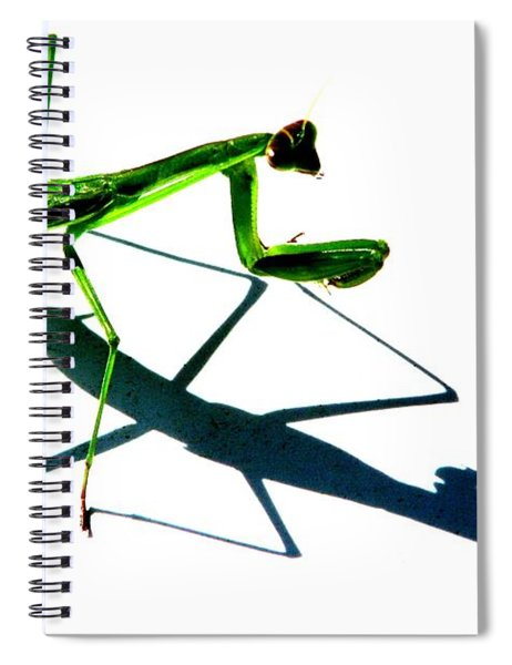 Shadow Boxing Spiral Notebook