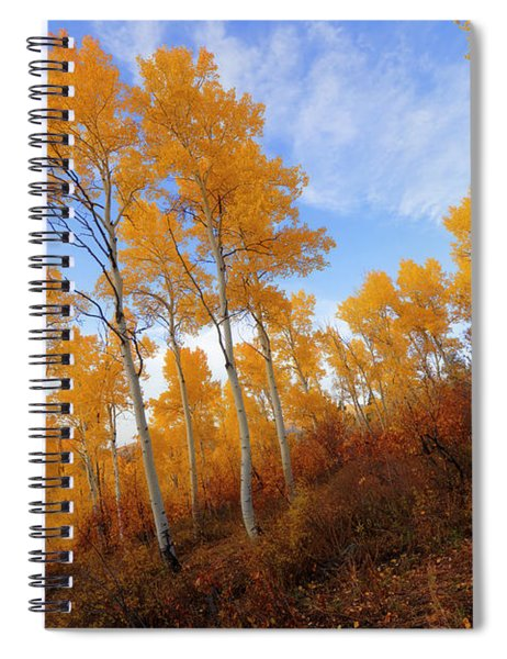 Shadowed Hill Spiral Notebook