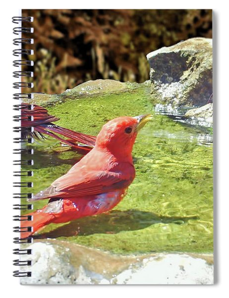 Sharing A Bath Spiral Notebook