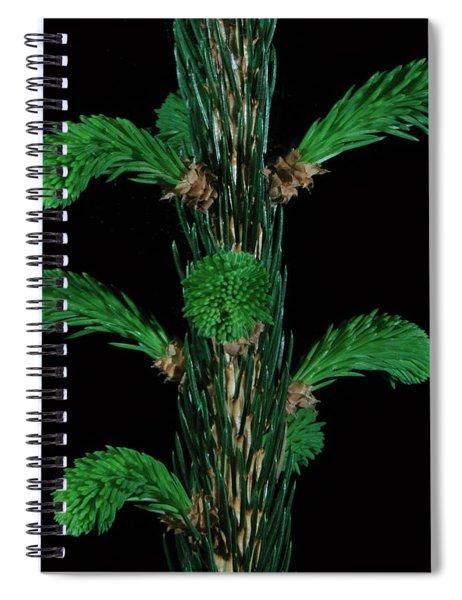 Sharp And Soft Spiral Notebook