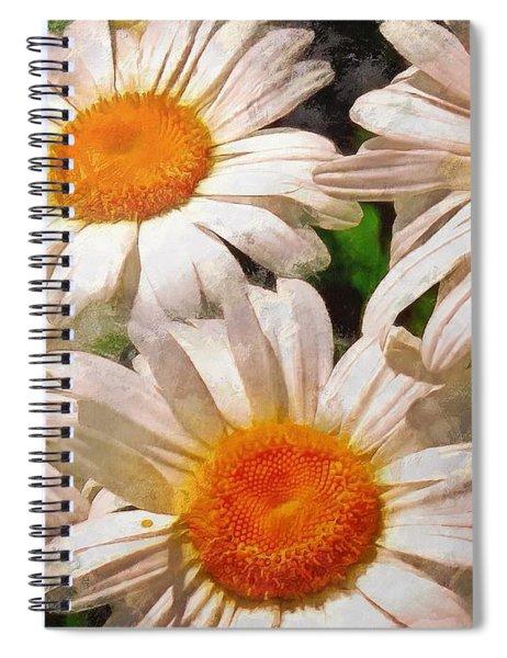 Shasta Daisies 2015 Spiral Notebook
