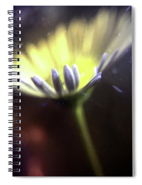 She Loves Me She Loves Me Not Spiral Notebook