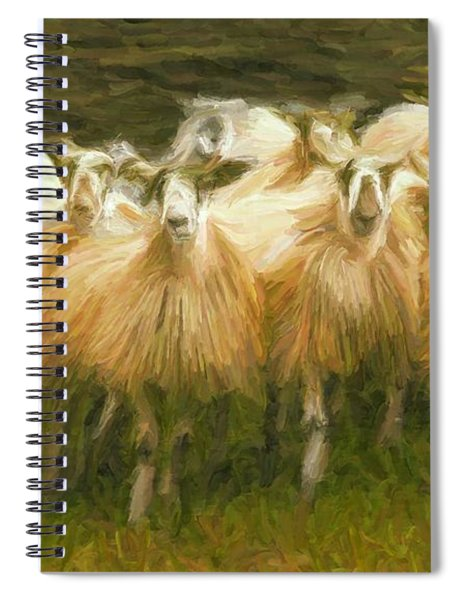 Sheep At Hadrian's Wall Spiral Notebook