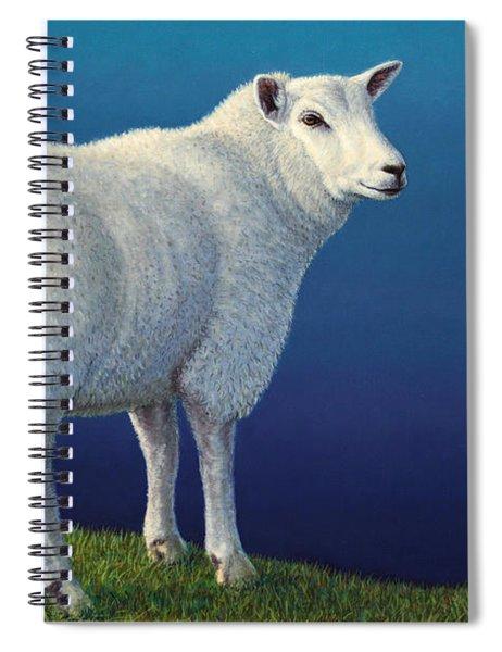 Sheep At The Edge Spiral Notebook