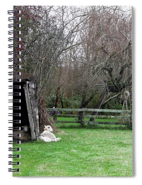 Spiral Notebook featuring the photograph Sheep Shed by Lorraine Devon Wilke