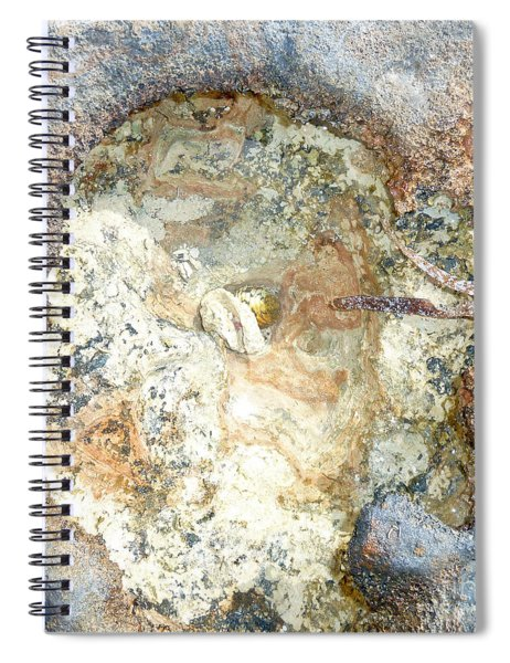 Shell In Rock Spiral Notebook