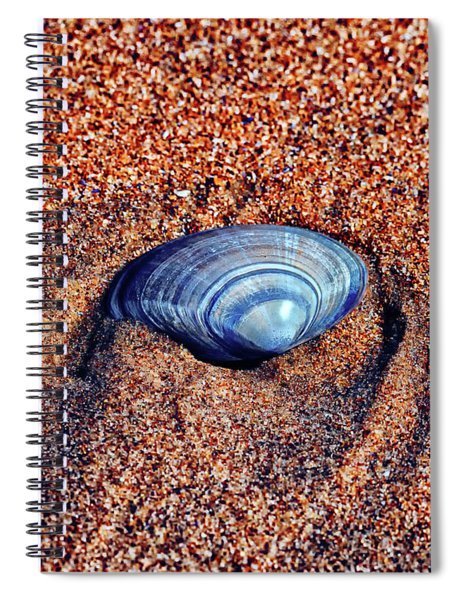 Shell Spiral Notebook