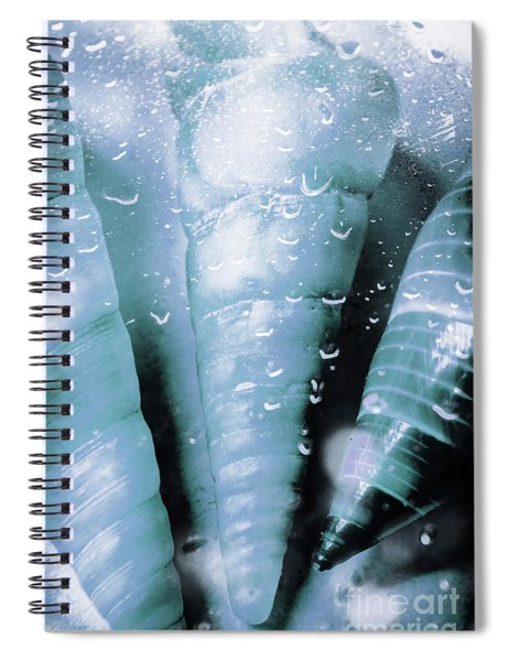 Shells And Ocean Spray Spiral Notebook