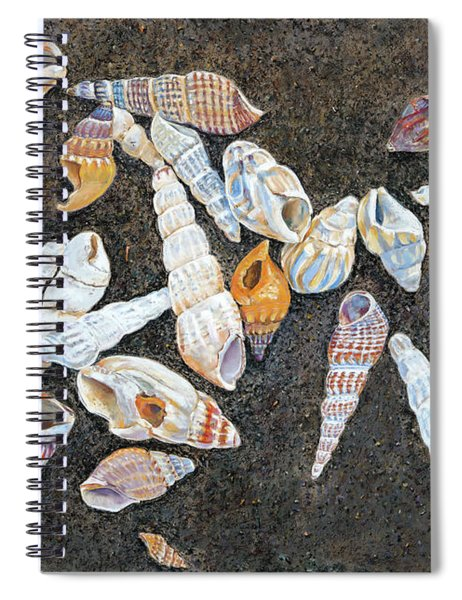 Shells From The Sea Of Galilee Spiral Notebook
