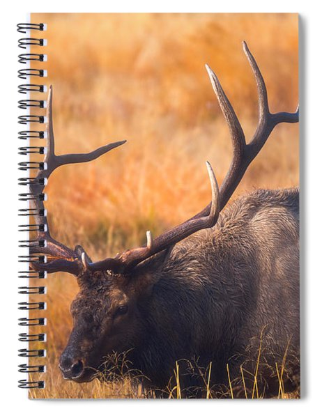 Shooting The Bull Spiral Notebook
