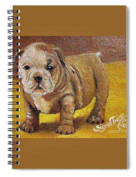 Chloe The   Flying Lamb Productions      Shortstop The English Bulldog Pup Spiral Notebook