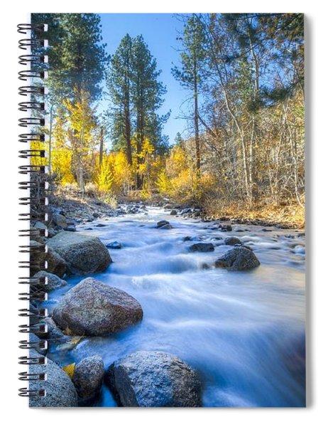 Sierra Mountain Stream Spiral Notebook