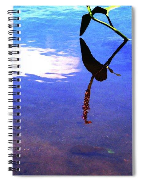 Silhouette Aquatic Fish Spiral Notebook