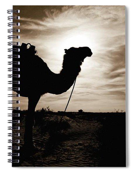 Silhouetted Camel, Sahara Desert, Douz Spiral Notebook