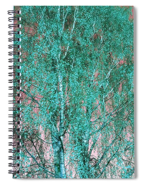 Silver Birch In Turquoise Spiral Notebook