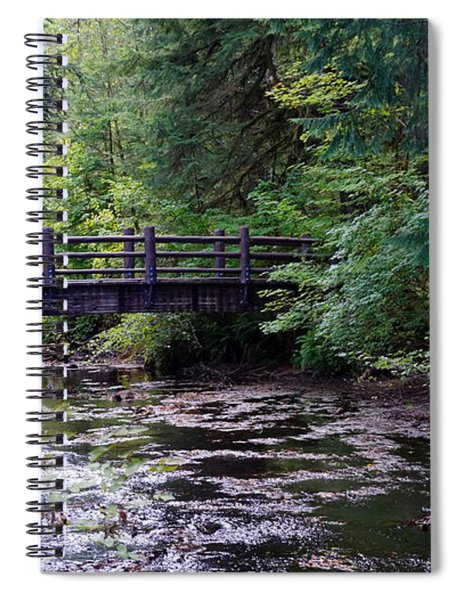 Silver Creek Falls #38 Spiral Notebook