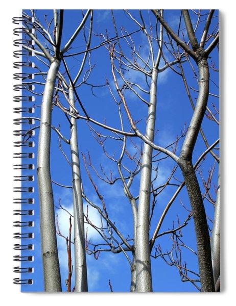 Silver Smooth Spiral Notebook