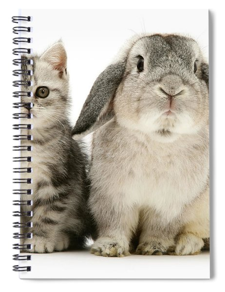 Silver Tabby And Rabby Spiral Notebook
