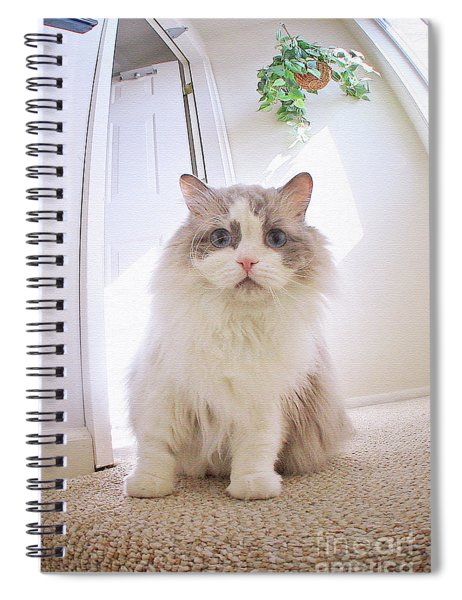 Simply Beautiful Spiral Notebook