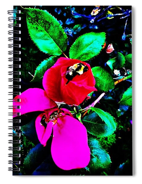 Simply Look With Perceptive Eyes Spiral Notebook