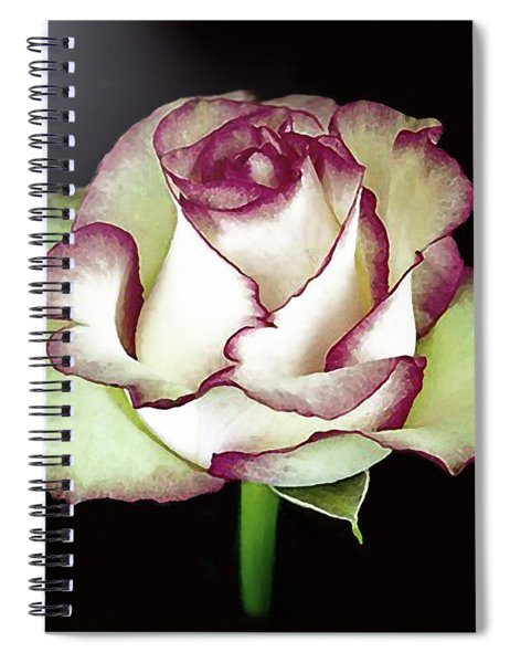 Single Beautiful Rose Spiral Notebook