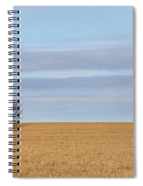 Single Tree In Large Field With Cloudy Skies Spiral Notebook