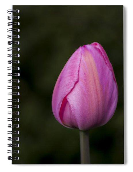 Single Tulip Spiral Notebook