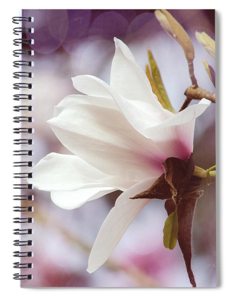 Single White Magnolia Spiral Notebook