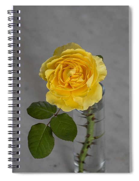 Single Yellow Rose With Thorns Spiral Notebook