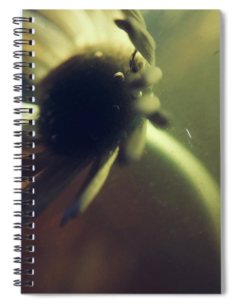 Sinking, Feeling Spiral Notebook